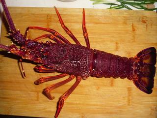 美式大龙虾的做法 美式大龙虾的家常做法大全怎么做好吃